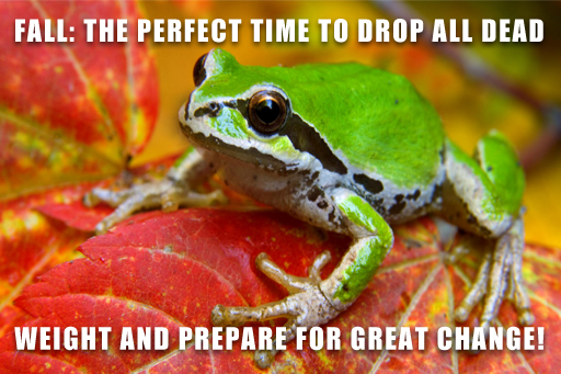 prepare for great change